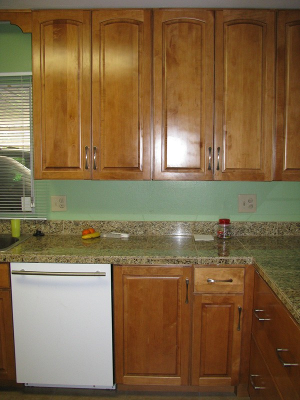 fixing-to-stay-kitchen-dishwasher-cabinet-veiw