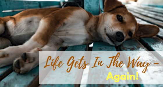 Life Gets in the Way…Again!